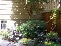 Mountain View Landscaping_5